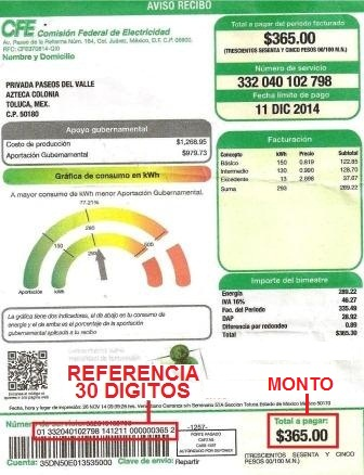 Gas Natural Monterrey Recibo